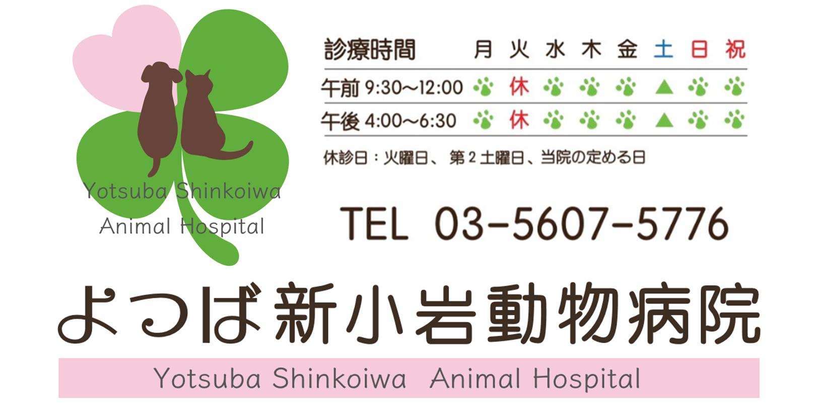 葛飾区・新小岩駅|よつば新小岩動物病院|ペットホテル・トリミング